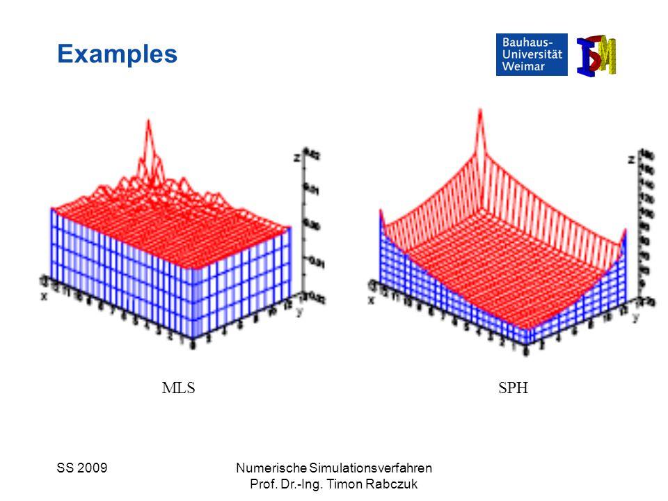 SS 2009Numerische Simulationsverfahren Prof. Dr.-Ing. Timon Rabczuk Examples MLSSPH