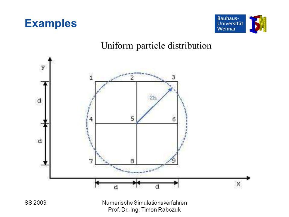 SS 2009Numerische Simulationsverfahren Prof. Dr.-Ing. Timon Rabczuk Examples Uniform particle distribution