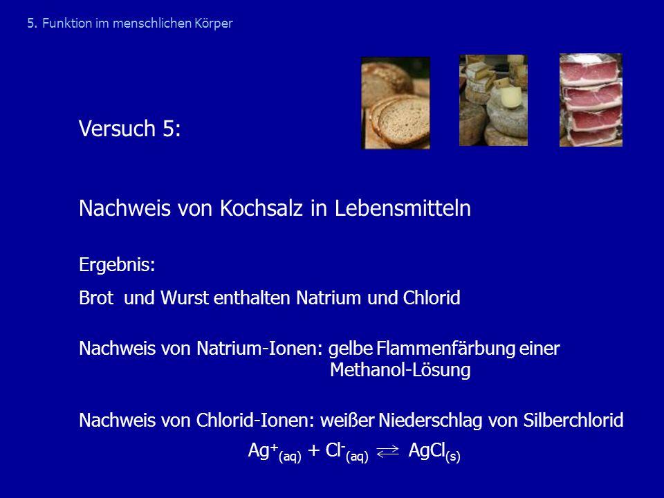 Versuch 5: Nachweis von Kochsalz in Lebensmitteln 5. Funktion im menschlichen Körper Ergebnis: Brot und Wurst enthalten Natrium und Chlorid Nachweis v