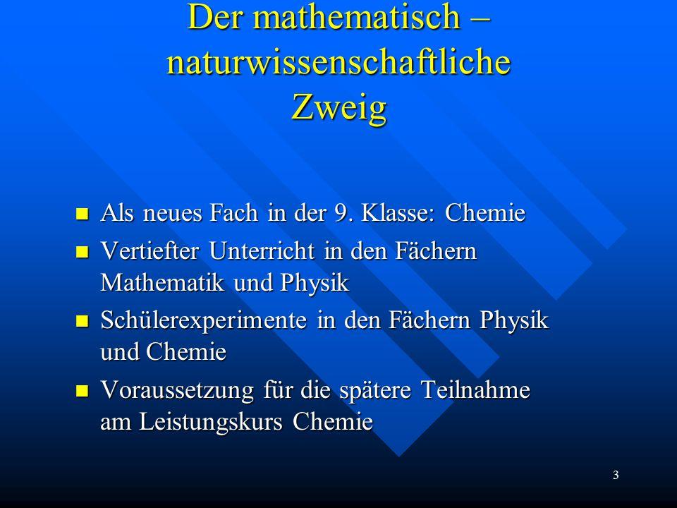 3 Der mathematisch – naturwissenschaftliche Zweig Als neues Fach in der 9.