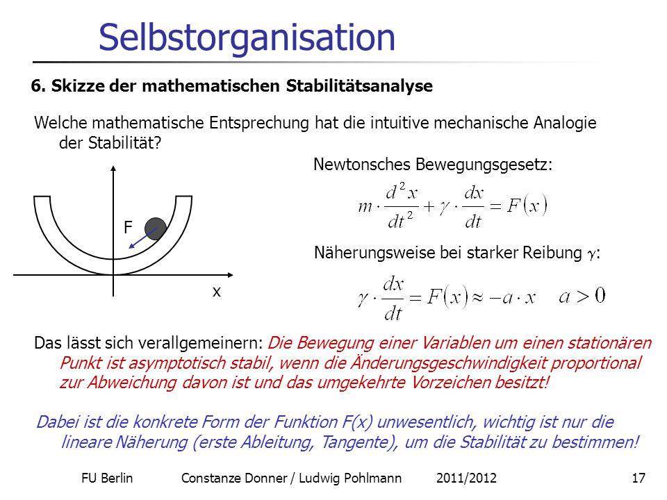 FU Berlin Constanze Donner / Ludwig Pohlmann 2011/201217 Selbstorganisation 6.