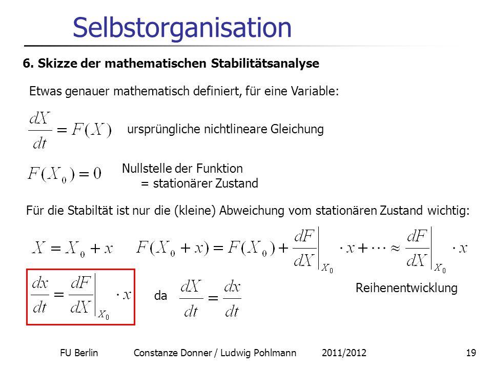 FU Berlin Constanze Donner / Ludwig Pohlmann 2011/201219 Selbstorganisation 6. Skizze der mathematischen Stabilitätsanalyse Etwas genauer mathematisch