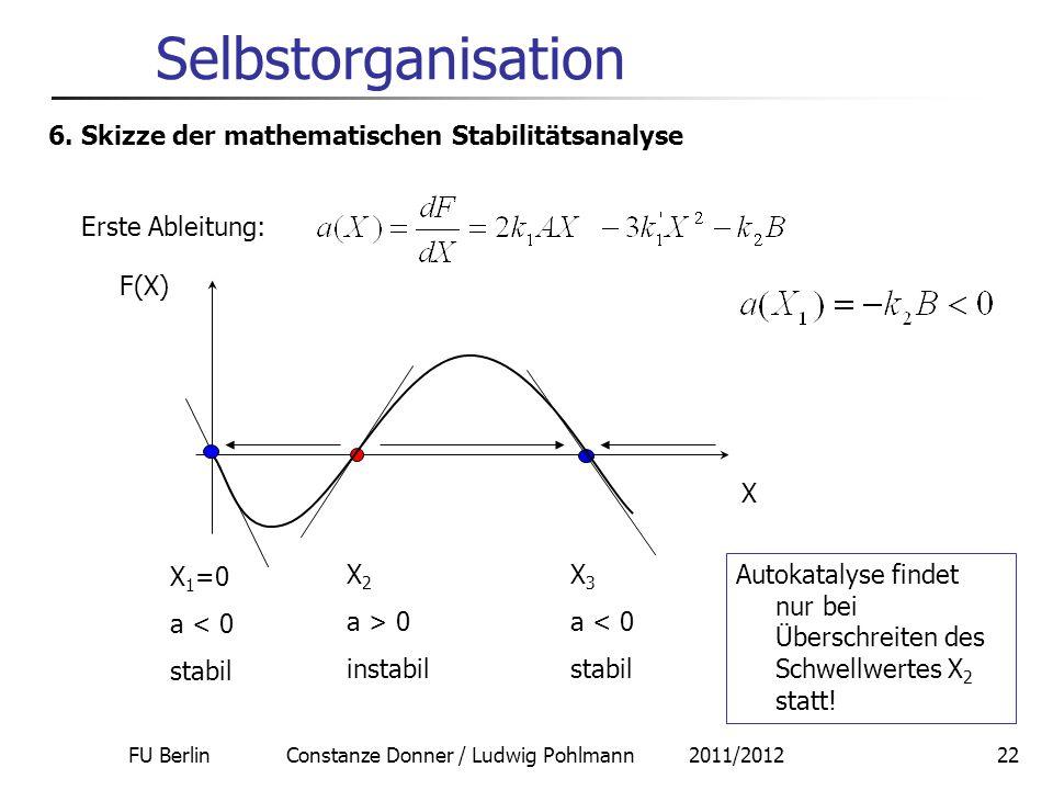 FU Berlin Constanze Donner / Ludwig Pohlmann 2011/201222 Selbstorganisation 6. Skizze der mathematischen Stabilitätsanalyse Erste Ableitung: F(X) X X