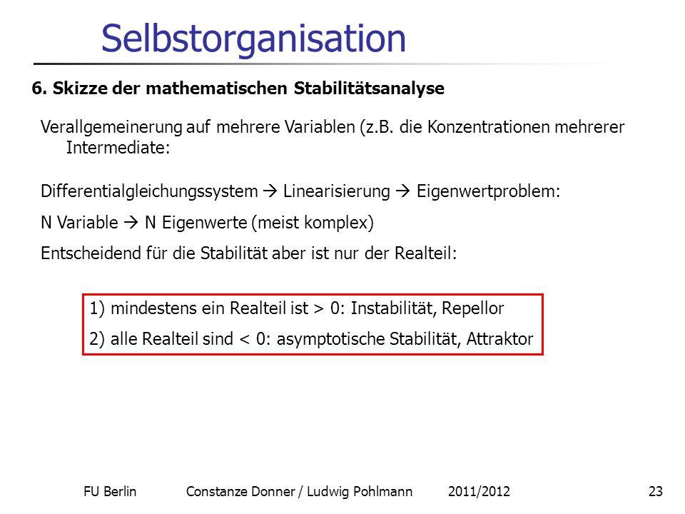 FU Berlin Constanze Donner / Ludwig Pohlmann 2011/201223 Selbstorganisation 6. Skizze der mathematischen Stabilitätsanalyse Verallgemeinerung auf mehr
