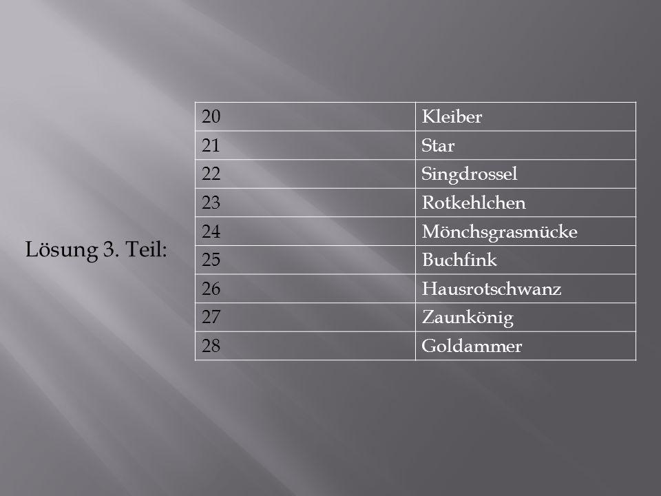 20Kleiber 21Star 22Singdrossel 23Rotkehlchen 24Mönchsgrasmücke 25Buchfink 26Hausrotschwanz 27Zaunkönig 28Goldammer Lösung 3.