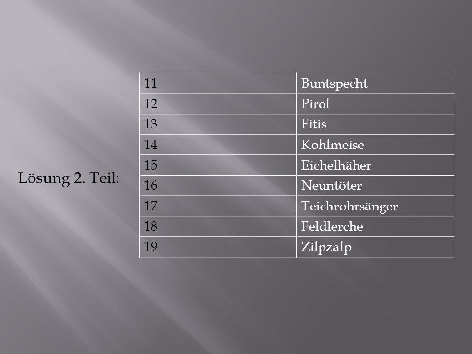11Buntspecht 12Pirol 13Fitis 14Kohlmeise 15Eichelhäher 16Neuntöter 17Teichrohrsänger 18Feldlerche 19Zilpzalp Lösung 2.