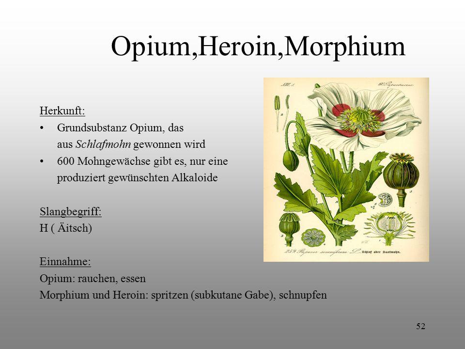 52 Opium,Heroin,Morphium Herkunft: Grundsubstanz Opium, das aus Schlafmohn gewonnen wird 600 Mohngewächse gibt es, nur eine produziert gewünschten Alk