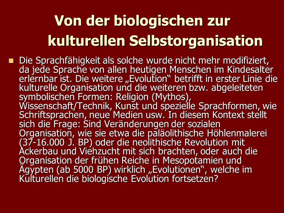 Von der biologischen zur kulturellen Selbstorganisation Die Sprachfähigkeit als solche wurde nicht mehr modifiziert, da jede Sprache von allen heutigen Menschen im Kindesalter erlernbar ist.