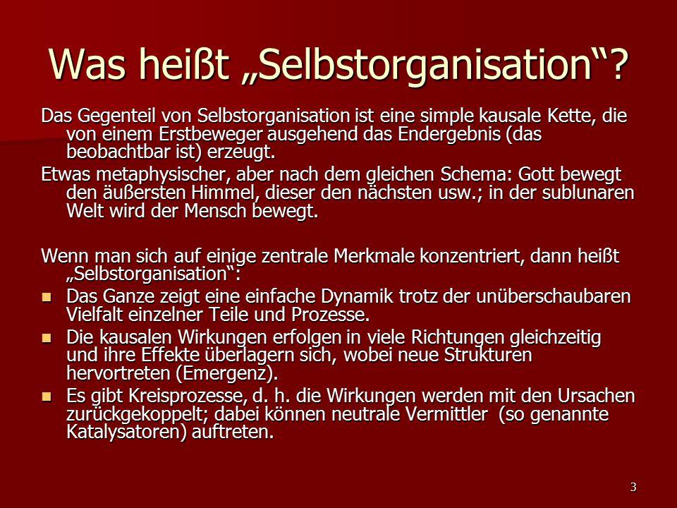 """3 Was heißt """"Selbstorganisation""""? Das Gegenteil von Selbstorganisation ist eine simple kausale Kette, die von einem Erstbeweger ausgehend das Endergeb"""