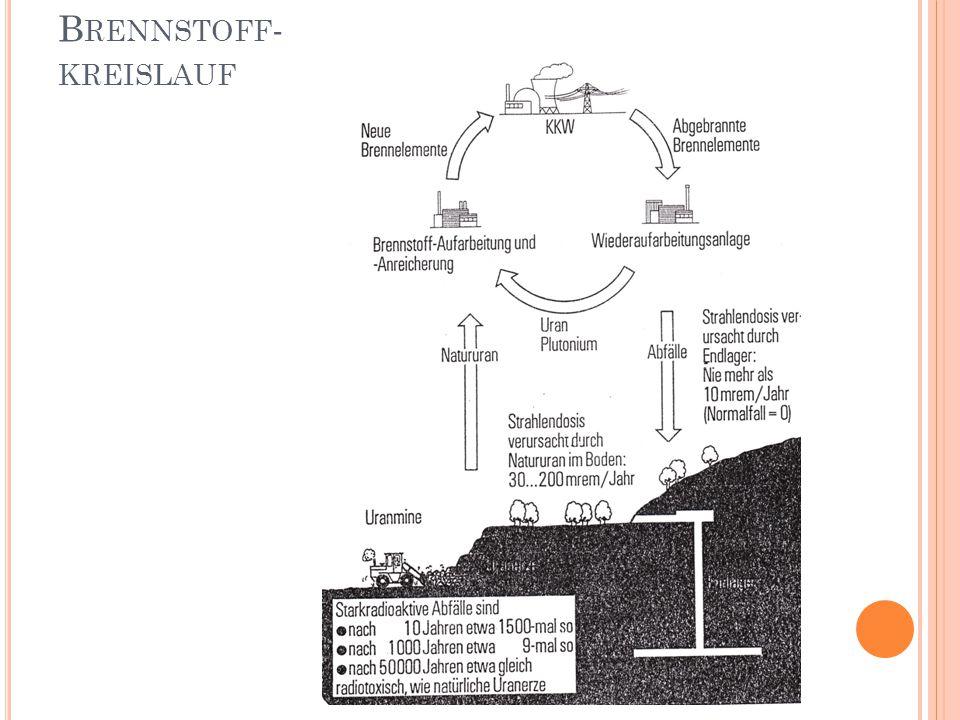 B RENNSTOFF - KREISLAUF