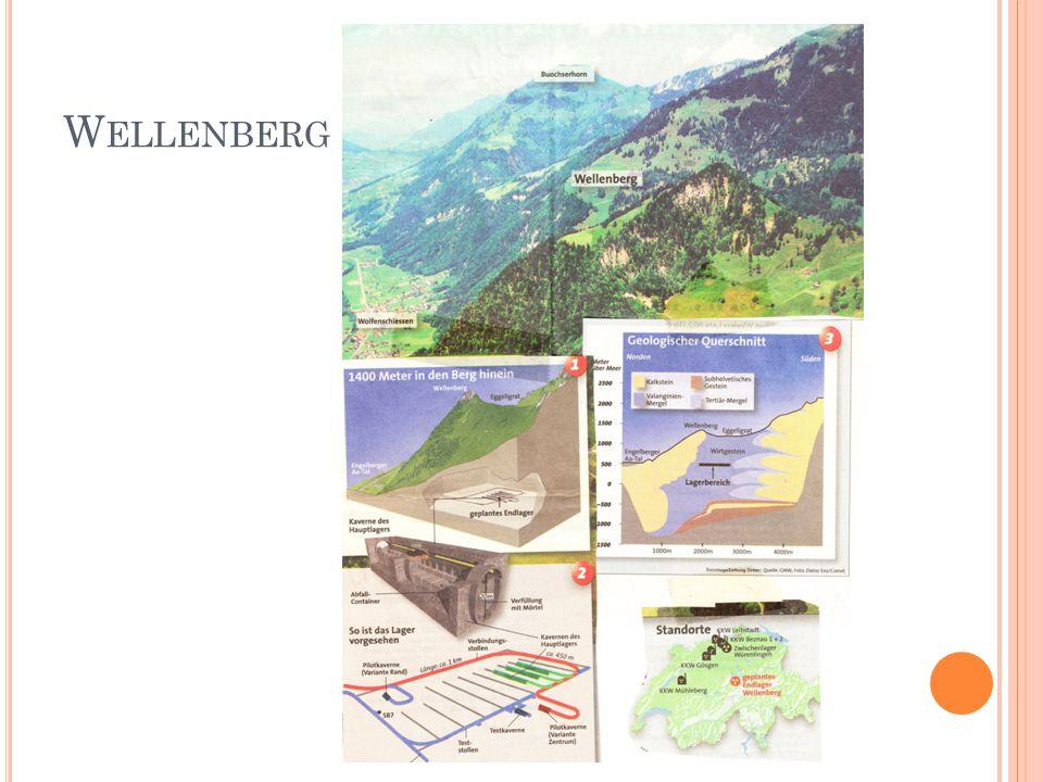 W ELLENBERG