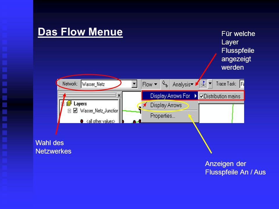 Das Flow Menue Wahl des Netzwerkes Für welche Layer Flusspfeile angezeigt werden Anzeigen der Flusspfeile An / Aus