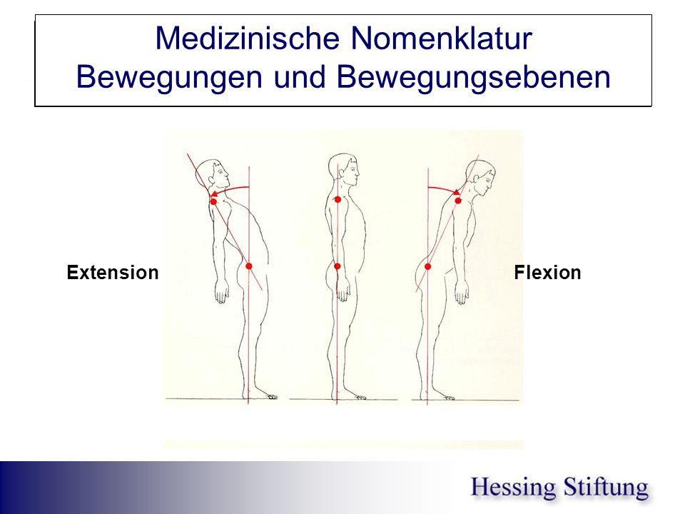 WS Rumpfrück-/vorneigung Medizinische Nomenklatur Bewegungen und Bewegungsebenen Extension Flexion