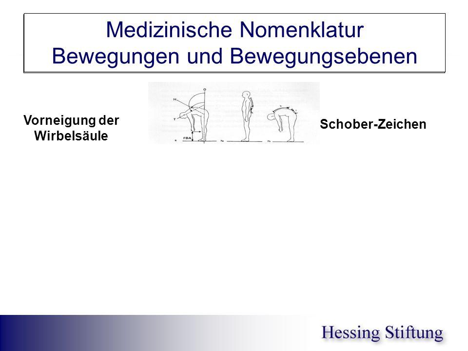 WS Inkl/Reklin Schober Medizinische Nomenklatur Bewegungen und Bewegungsebenen Schober-Zeichen Kyphosewinkel Vorneigung der Wirbelsäule