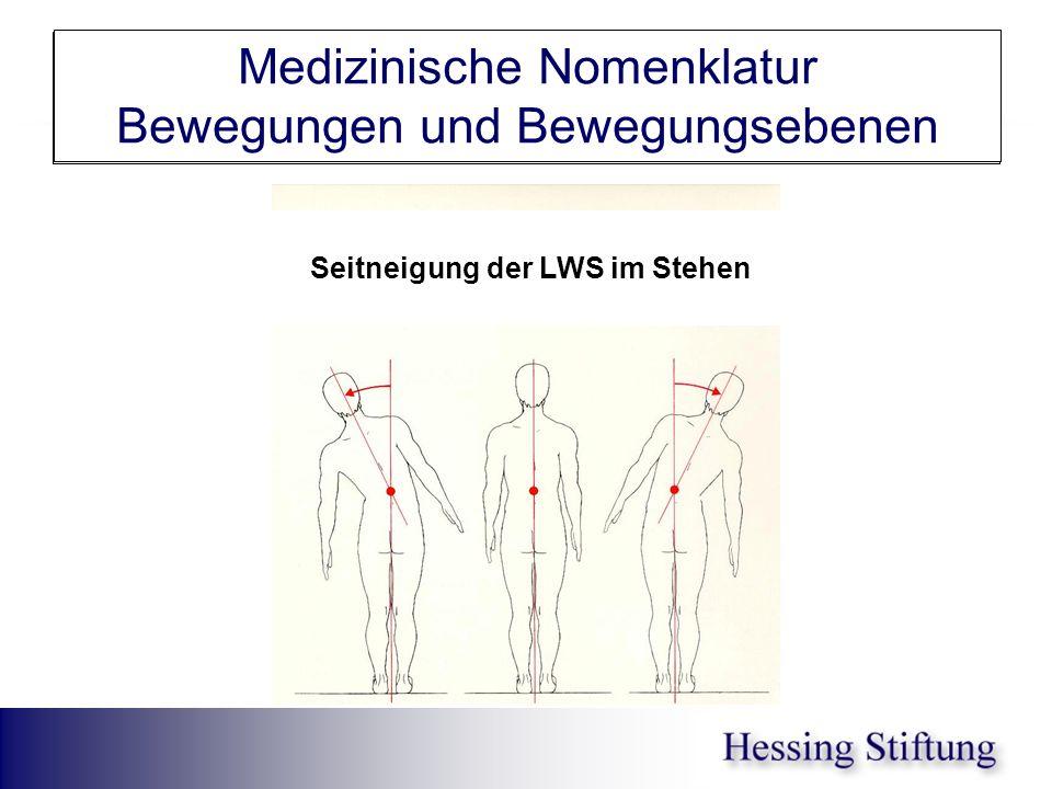 WS Seitneigung Medizinische Nomenklatur Bewegungen und Bewegungsebenen Seitneigung der LWS im Stehen