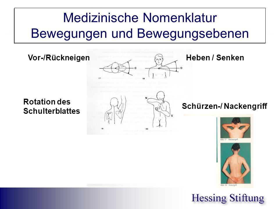 Schultergel.Antev/Retrov. Medizinische Nomenklatur Bewegungen und Bewegungsebenen Schürzen-/ Nackengriff Heben / SenkenVor-/Rückneigen Rotation des Sc