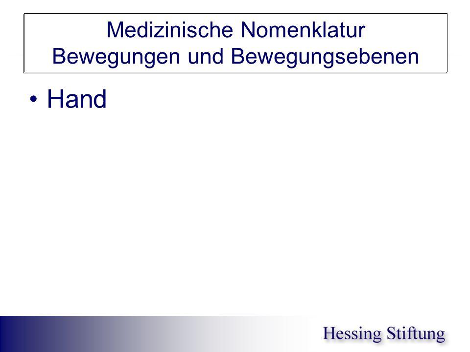 Hand Medizinische Nomenklatur Bewegungen und Bewegungsebenen Hand