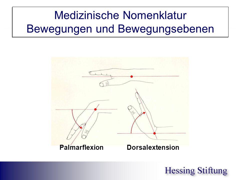 Hand Ext/Flex Medizinische Nomenklatur Bewegungen und Bewegungsebenen Palmarflexion Dorsalextension