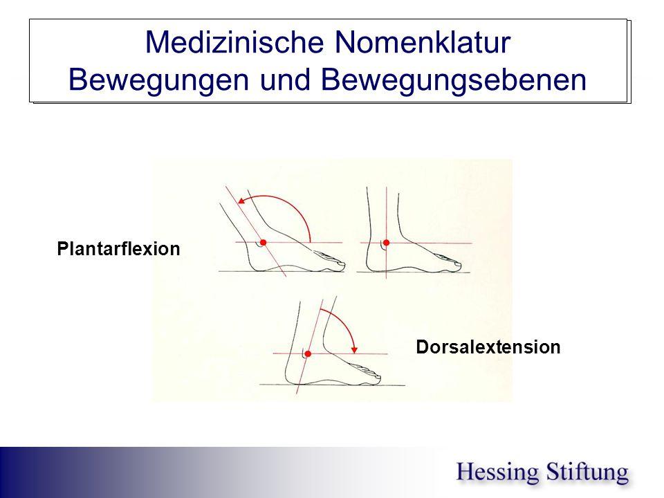 Fuß OSG Ext/Flex Medizinische Nomenklatur Bewegungen und Bewegungsebenen Plantarflexion Dorsalextension