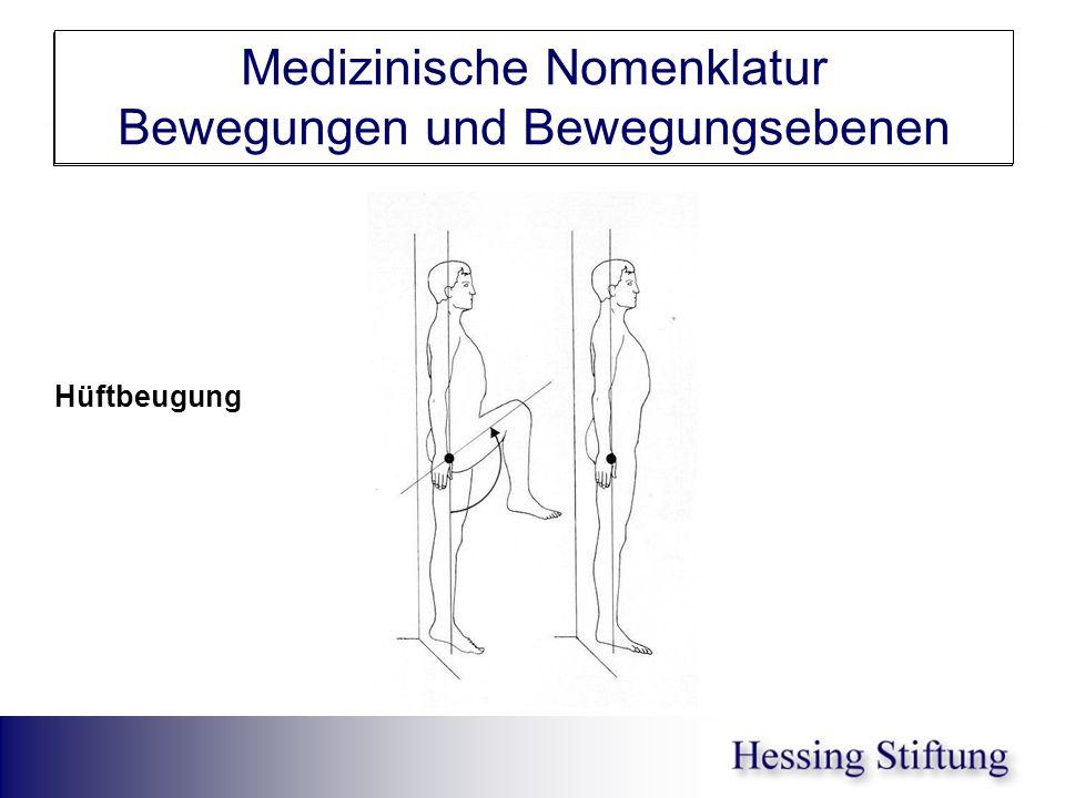 Hüfte Flex im ST Medizinische Nomenklatur Bewegungen und Bewegungsebenen Hüftbeugung