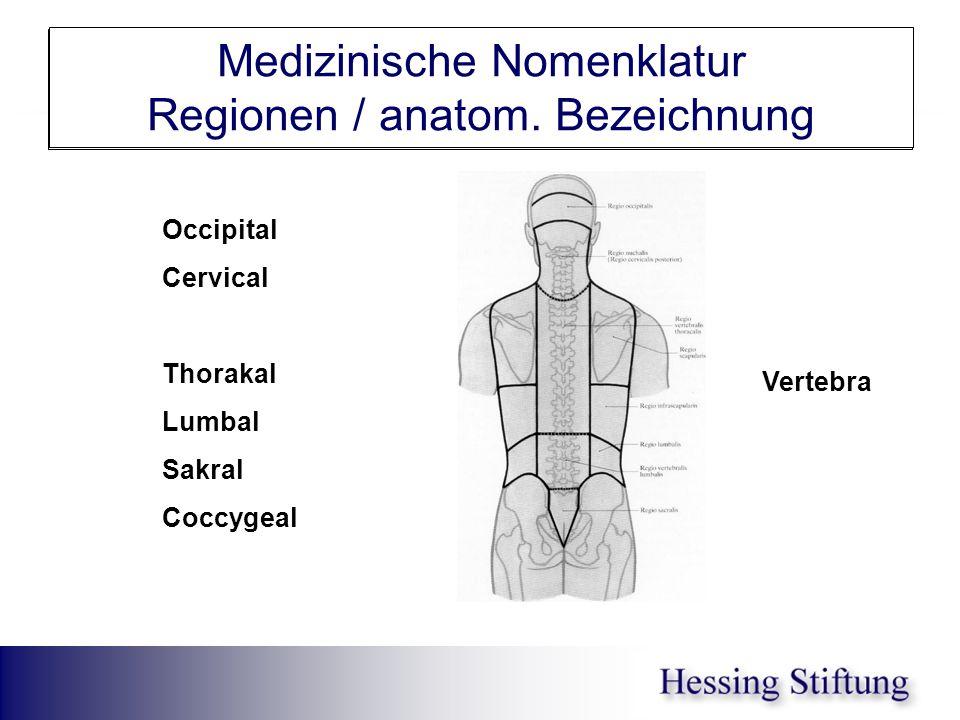 Rumpf Medizinische Nomenklatur Regionen / anatom. Bezeichnung Occipital Cervical Thorakal Lumbal Sakral Coccygeal Vertebra