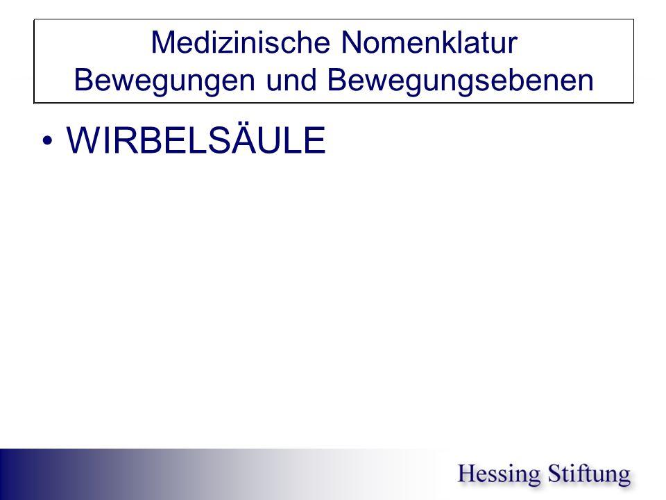 WS Rumpfrotation Medizinische Nomenklatur Bewegungen und Bewegungsebenen Rotation Rechtsrotation Linksrotation