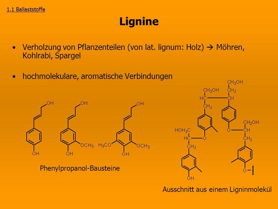 Lignine Verholzung von Pflanzenteilen (von lat. lignum: Holz)  Möhren, Kohlrabi, Spargel hochmolekulare, aromatische Verbindungen Phenylpropanol-Baus