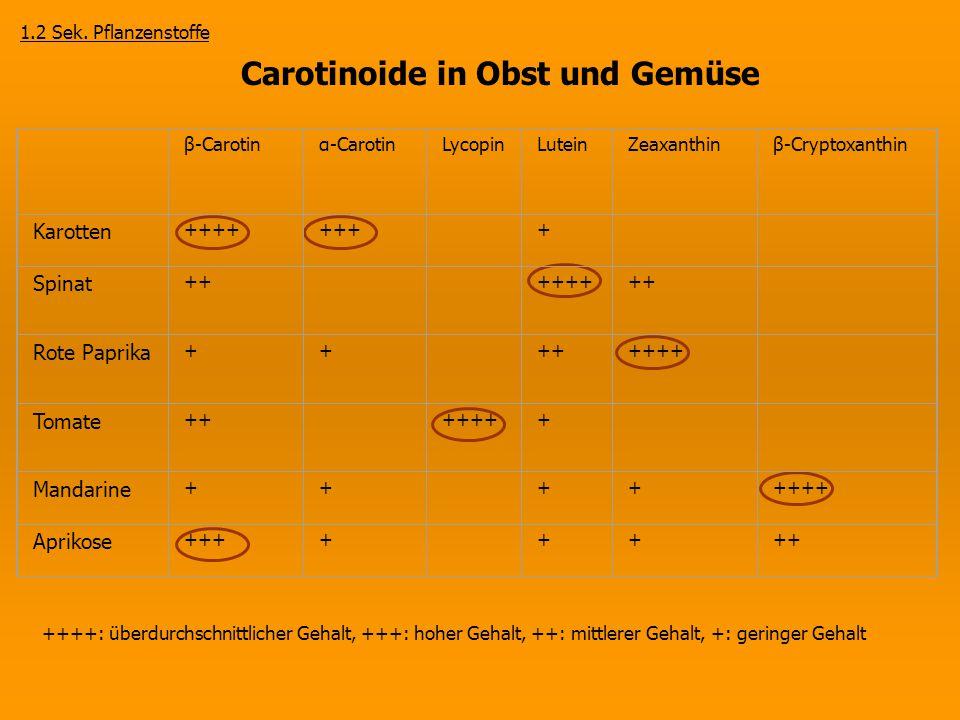 ++++: überdurchschnittlicher Gehalt, +++: hoher Gehalt, ++: mittlerer Gehalt, +: geringer Gehalt β-Carotinα-CarotinLycopinLuteinZeaxanthinβ-Cryptoxant