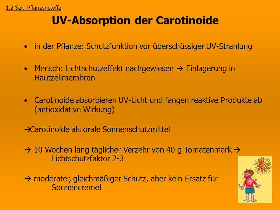 UV-Absorption der Carotinoide in der Pflanze: Schutzfunktion vor überschüssiger UV-Strahlung Mensch: Lichtschutzeffekt nachgewiesen  Einlagerung in H