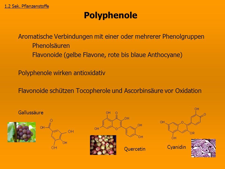 Polyphenole Aromatische Verbindungen mit einer oder mehrerer Phenolgruppen Phenolsäuren Flavonoide (gelbe Flavone, rote bis blaue Anthocyane) Polyphen