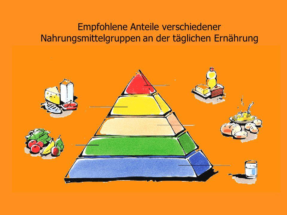 Empfohlene Anteile verschiedener Nahrungsmittelgruppen an der täglichen Ernährung