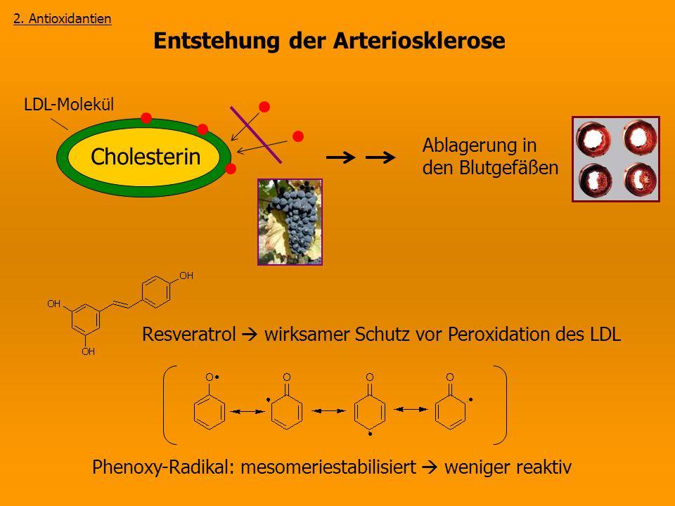 Entstehung der Arteriosklerose Cholesterin LDL-Molekül Ablagerung in den Blutgefäßen 2. Antioxidantien Resveratrol  wirksamer Schutz vor Peroxidation