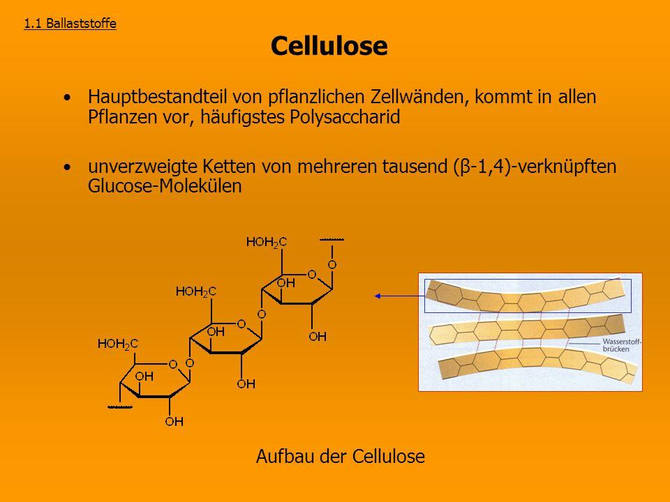 Versuch 1 Nachweis von Cellulose in Gemüse Ergebnis: Blaufärbung der Cellulose durch Zinkchloridiod-Lösung  Quellung der Fasern durch Zinkchlorid, Einlagerung von Iod- Molekülen zwischen den Fasern Iodmoleküle 1.1 Ballaststoffe