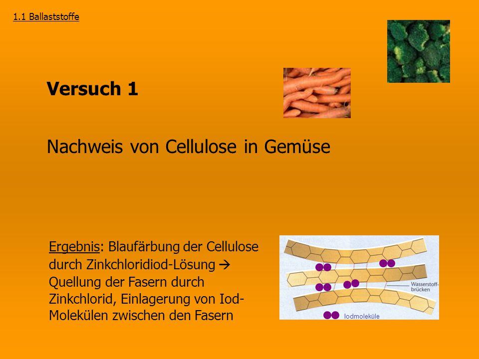Versuch 1 Nachweis von Cellulose in Gemüse Ergebnis: Blaufärbung der Cellulose durch Zinkchloridiod-Lösung  Quellung der Fasern durch Zinkchlorid, Ei