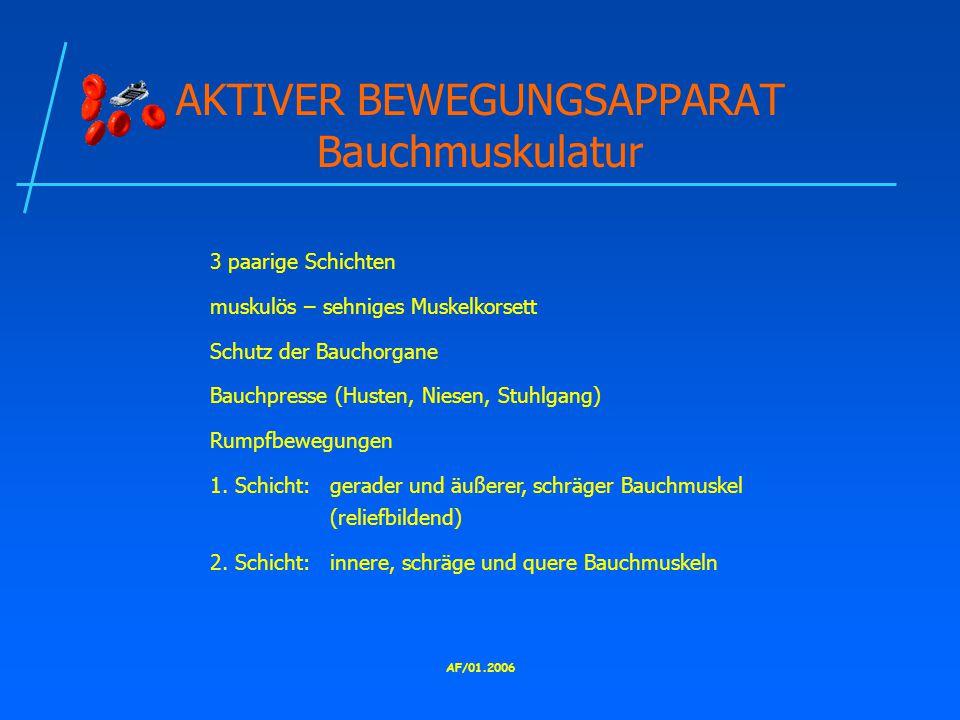AF/01.2006 AKTIVER BEWEGUNGSAPPARAT Bauchmuskulatur 3 paarige Schichten muskulös – sehniges Muskelkorsett Schutz der Bauchorgane Bauchpresse (Husten, Niesen, Stuhlgang) Rumpfbewegungen 1.