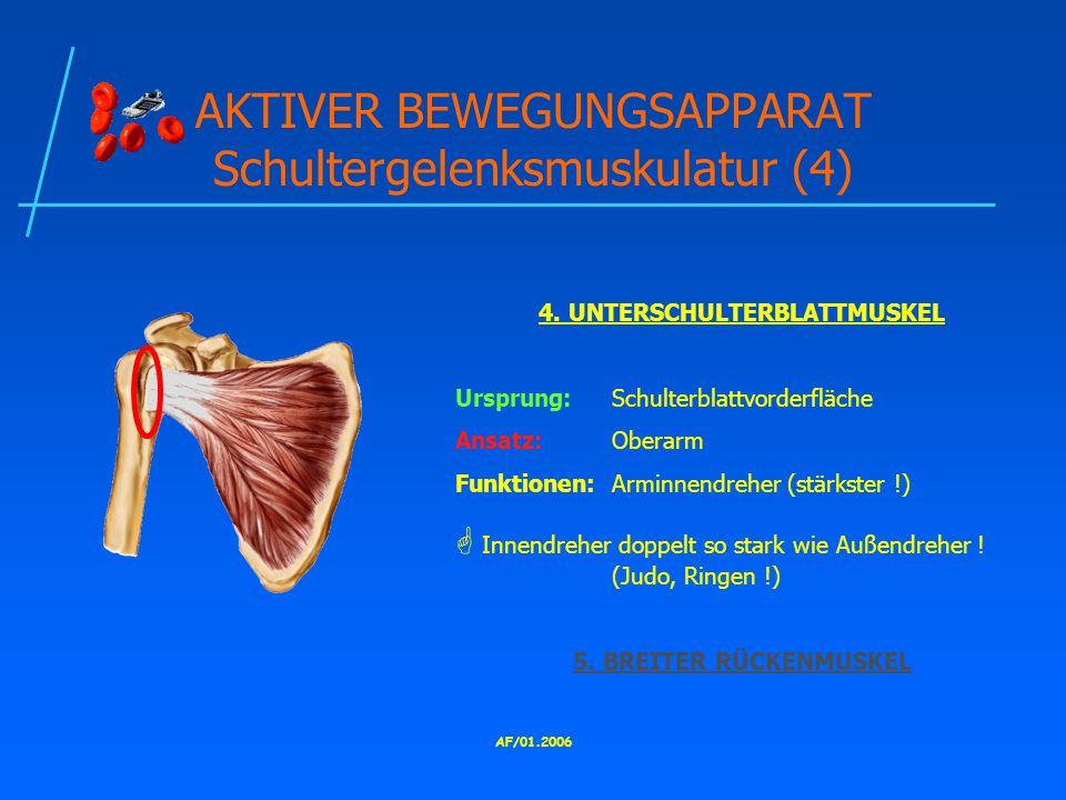 AF/01.2006 AKTIVER BEWEGUNGSAPPARAT Schultergelenksmuskulatur (4) 4.
