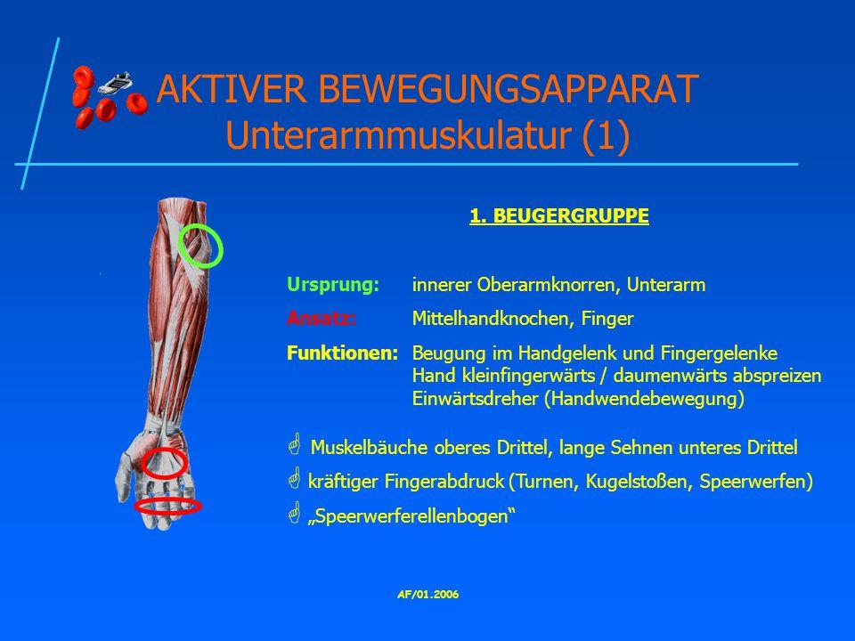 AF/01.2006 AKTIVER BEWEGUNGSAPPARAT Unterarmmuskulatur (1) 1.