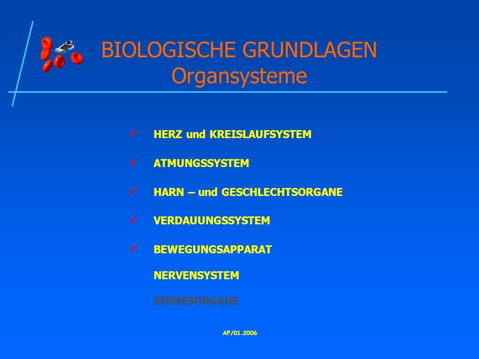 AF/01.2006 BIOLOGISCHE GRUNDLAGEN Organsysteme HERZ und KREISLAUFSYSTEM ATMUNGSSYSTEM HARN – und GESCHLECHTSORGANE VERDAUUNGSSYSTEM BEWEGUNGSAPPARAT NERVENSYSTEM SINNESORGANE