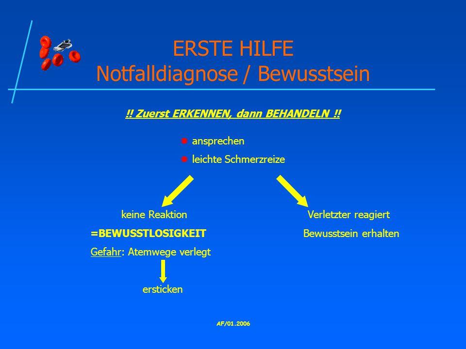 AF/01.2006 ERSTE HILFE Notfalldiagnose / Bewusstsein !.