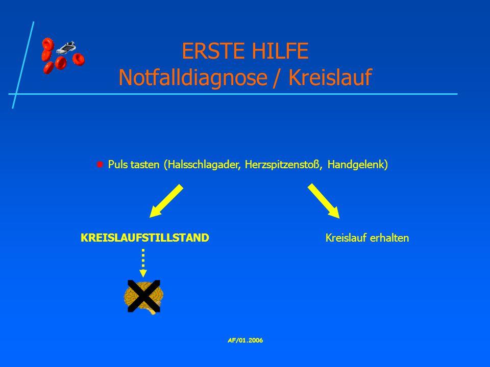 AF/01.2006 ERSTE HILFE Notfalldiagnose / Kreislauf  Puls tasten (Halsschlagader, Herzspitzenstoß, Handgelenk) KREISLAUFSTILLSTANDKreislauf erhalten 