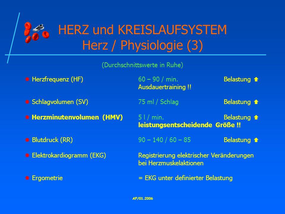 AF/01.2006 HERZ und KREISLAUFSYSTEM Herz / Physiologie (3)  Herzfrequenz (HF)60 – 90 / min.Belastung  Ausdauertraining !.