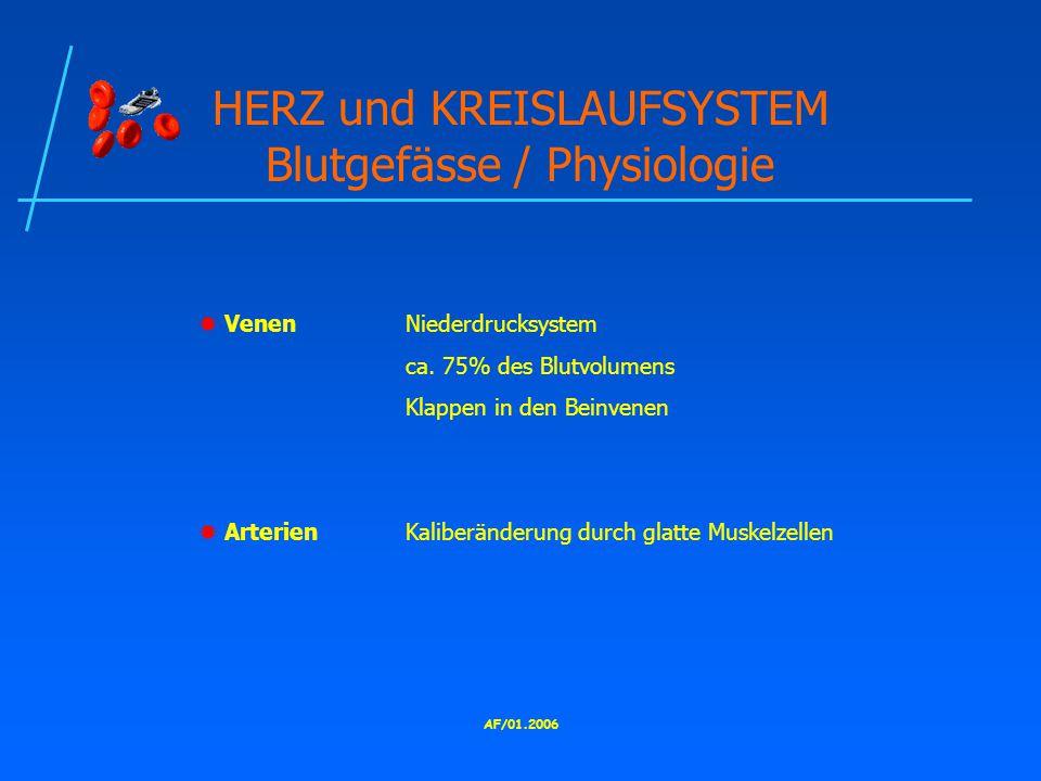 AF/01.2006 HERZ und KREISLAUFSYSTEM Blutgefässe / Physiologie  VenenNiederdrucksystem ca.