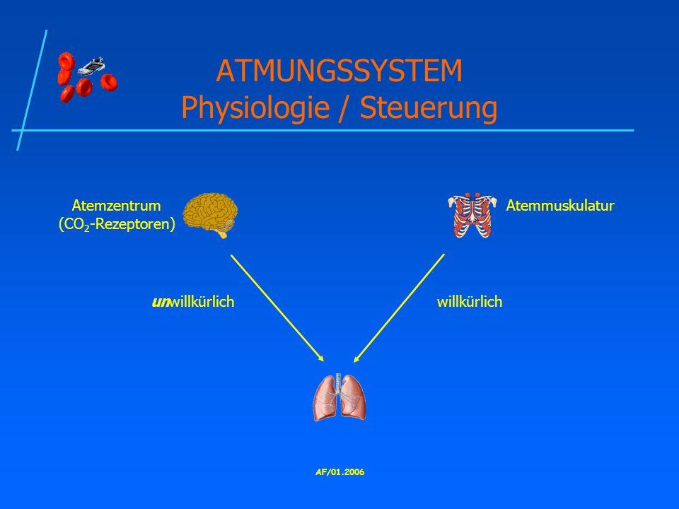 AF/01.2006 ATMUNGSSYSTEM Physiologie / Steuerung Atemzentrum (CO 2 -Rezeptoren) Atemmuskulatur unwillkürlichwillkürlich