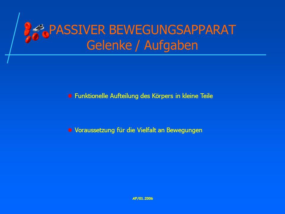 AF/01.2006 PASSIVER BEWEGUNGSAPPARAT Gelenke / Aufgaben  Funktionelle Aufteilung des Körpers in kleine Teile  Voraussetzung für die Vielfalt an Bewegungen