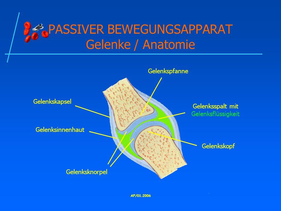 AF/01.2006 PASSIVER BEWEGUNGSAPPARAT Gelenke / Anatomie Gelenkskopf Gelenkspfanne Gelenksknorpel Gelenkskapsel Gelenksinnenhaut Gelenksspalt mit Gelenksflüssigkeit