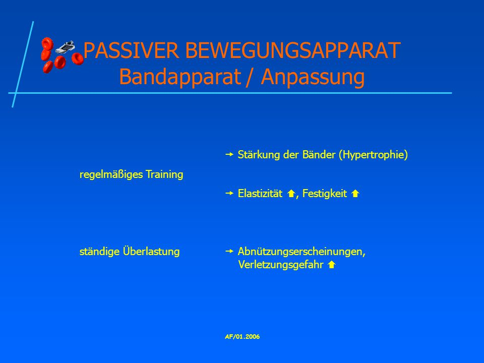 AF/01.2006 PASSIVER BEWEGUNGSAPPARAT Bandapparat / Anpassung  Stärkung der Bänder (Hypertrophie) regelmäßiges Training  Elastizität , Festigkeit  ständige Überlastung  Abnützungserscheinungen, Verletzungsgefahr 