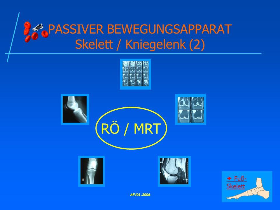 AF/01.2006 PASSIVER BEWEGUNGSAPPARAT Skelett / Kniegelenk (2) RÖ / MRT  Fuß- Skelett