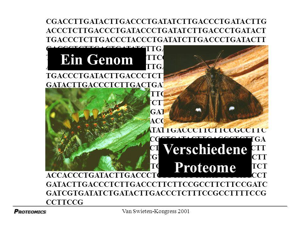 P ROTEOMICS Van Swieten-Kongress 2001 Ein Genom -verschiedene Proteome > 35.000 kodierende Gene in höheren Organismen Differenziell gespleisst Posttranslational modifiziert Teilweise abgebaut x 100.000 Protein Spezies / Organsimus Selektive Expression in Geweben und Zellen > 20.000 Protein Spezies / Zelle