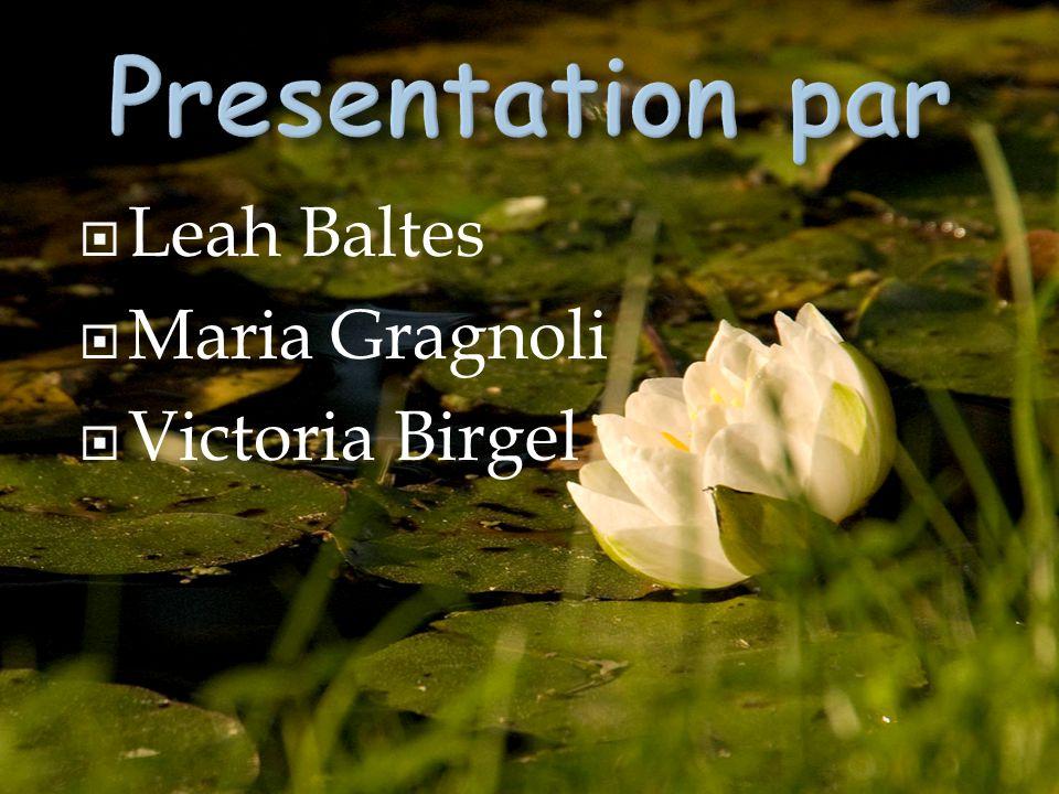  Leah Baltes  Maria Gragnoli  Victoria Birgel