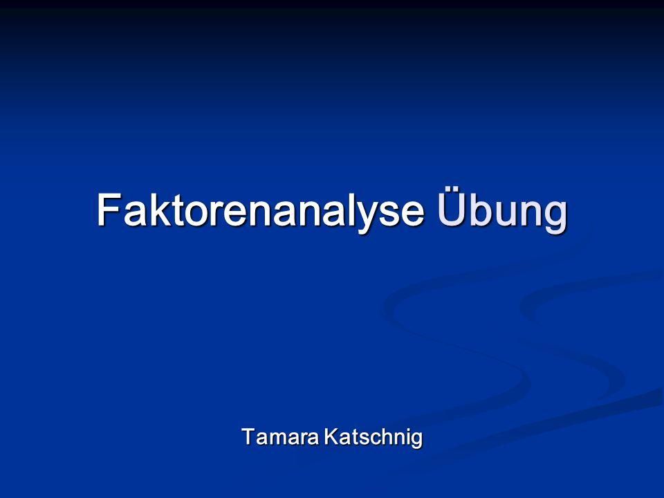 Faktorenanalyse Übung Tamara Katschnig